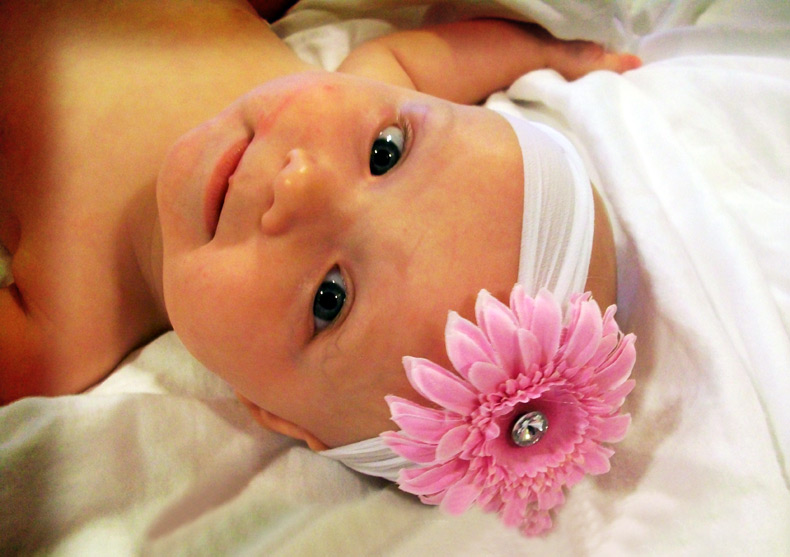 Цветы из ткани сделанные своими руками фото