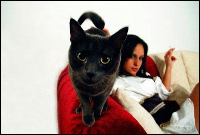 Девушка-кошка и леопардовый принт