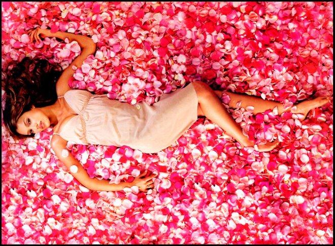 аромат розы и лепестки роз