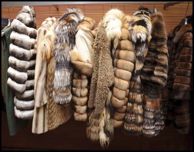 Меховые изделия Дома Fendi