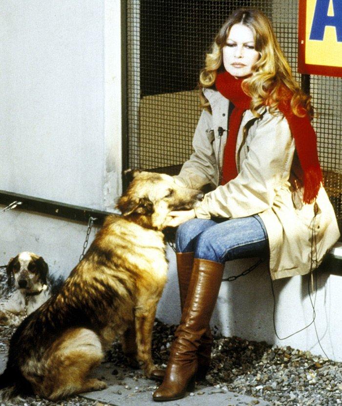 Брижит Бардо фото с собаками