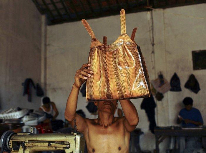 Пошив сумок из змеиной кожи, фото