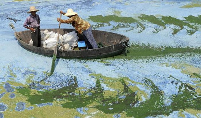 Китайская экономика и ее влияние на природу, фото