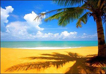 Пляжный отдых и наша красота