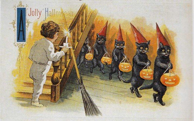 Черные кошки – винтажная открытка