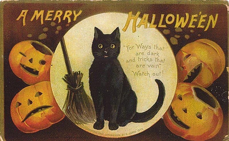 Черная кошка – винтажная открытка