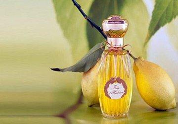 Цитрусовые ароматы в парфюмерии