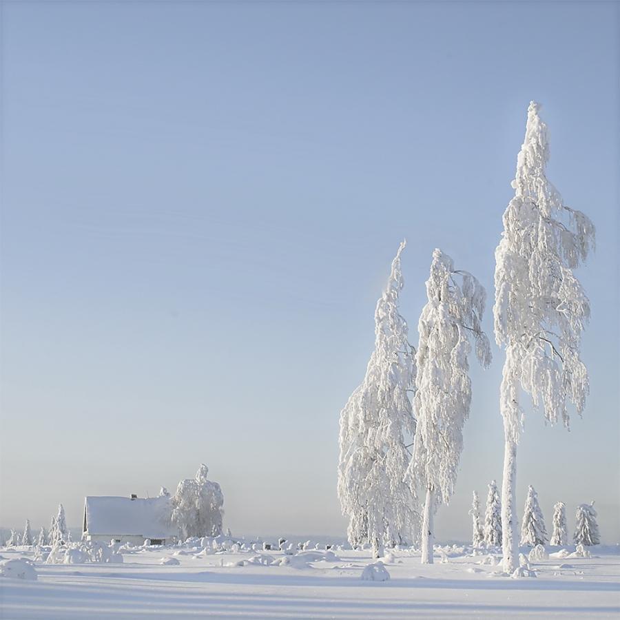 Зима – это время, когда выпадает белый снег
