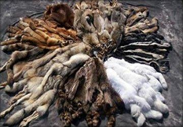 Качество и износостойкость меха