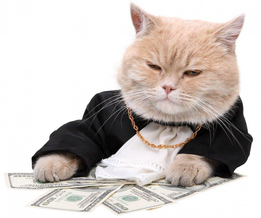 Деньги в качестве новогоднего подарка