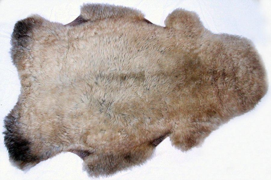 Овечья шкура – овчина, фото