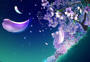 Парфюмерные ароматы ночи