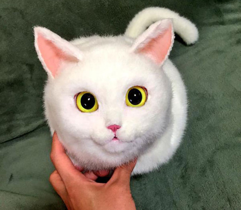 Меховая сумка белый кот