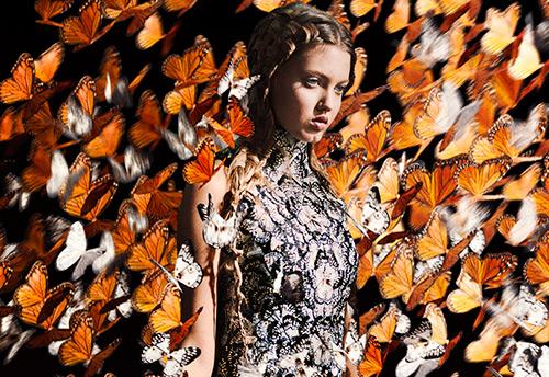 Принты с бабочками на платьях и аксессуарах