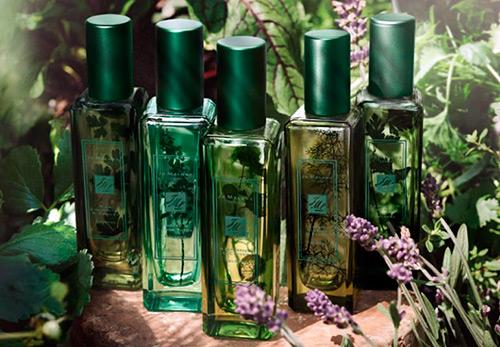 Новые ароматы весны и лета – выбираем лучшие