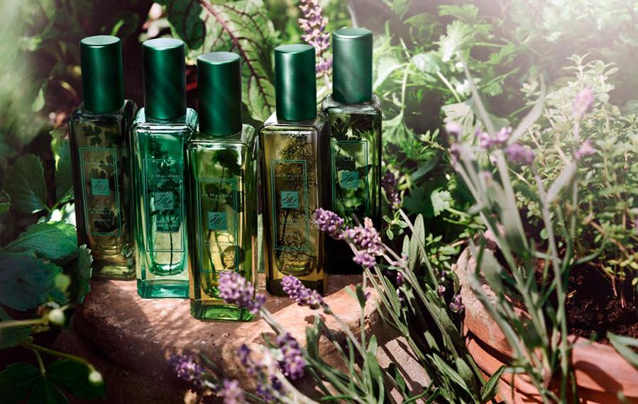 Новые ароматы для женщин и девушек