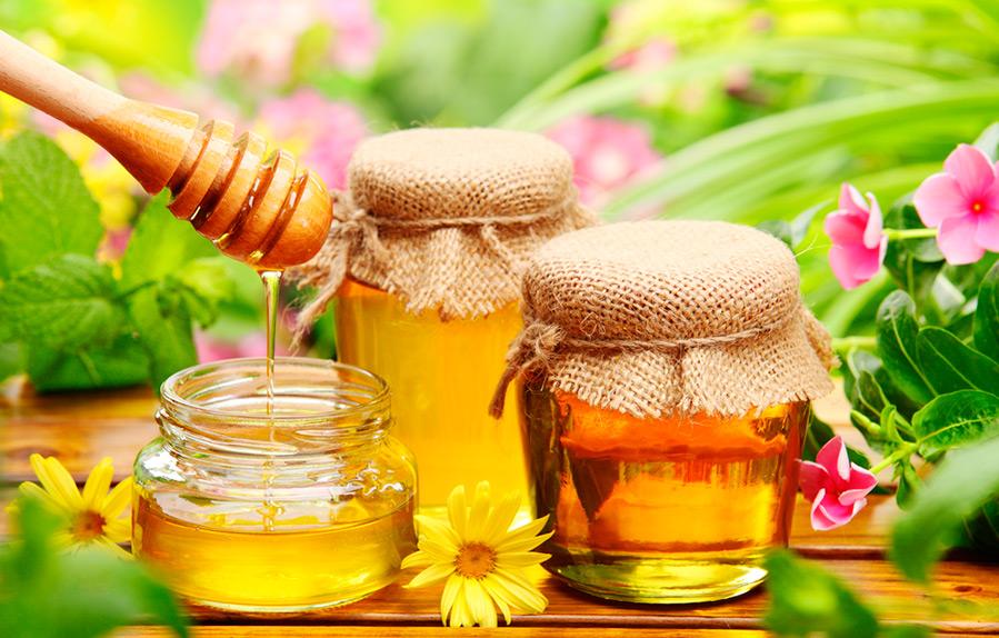 Мед для здоровья печени