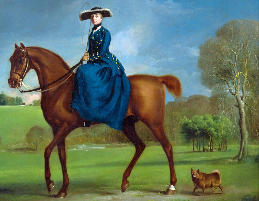 Редингот для конного спорта