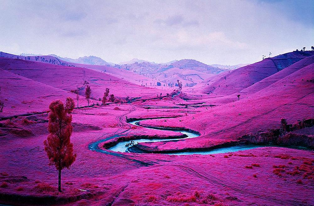 картинки цвет пурпурный.