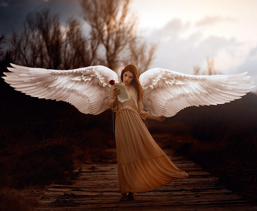 Картинки фото ангелы