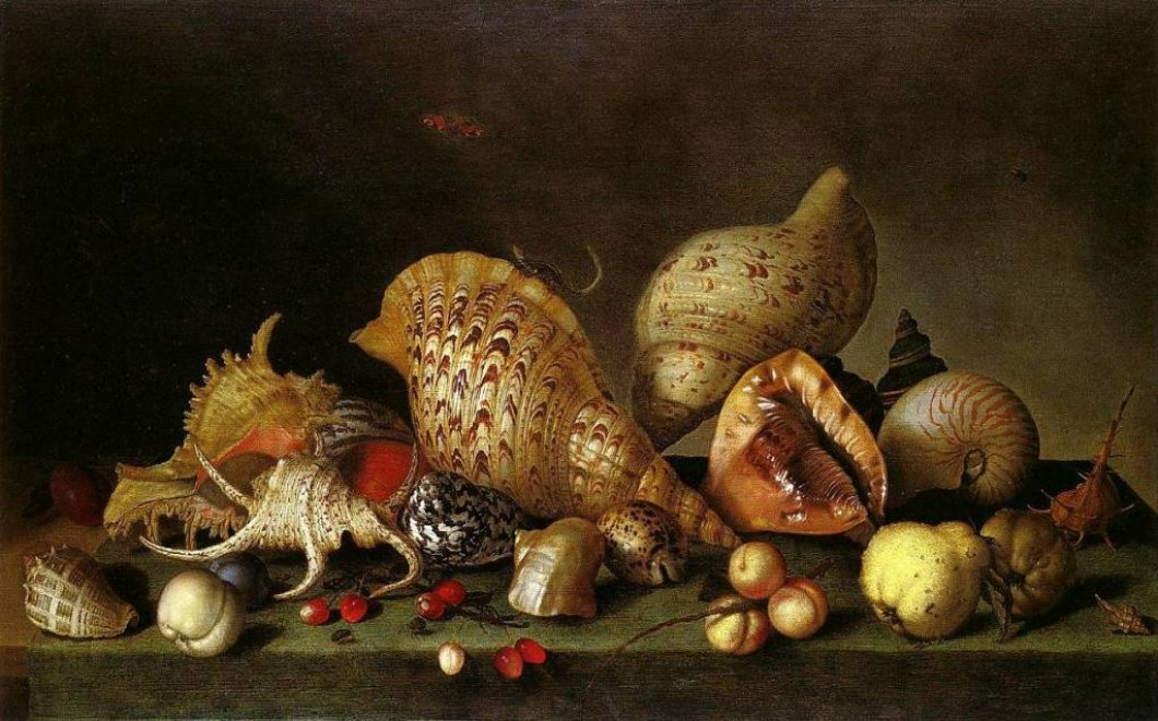 http://mylitta.ru/uploads/posts/2014-04/1396949051_seashells-11.jpg