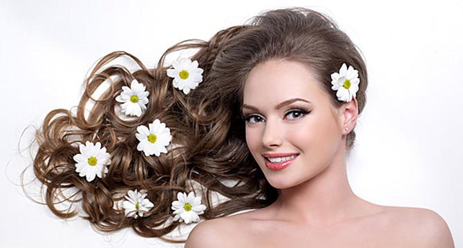 Цветки ромашки для окрашивания волос
