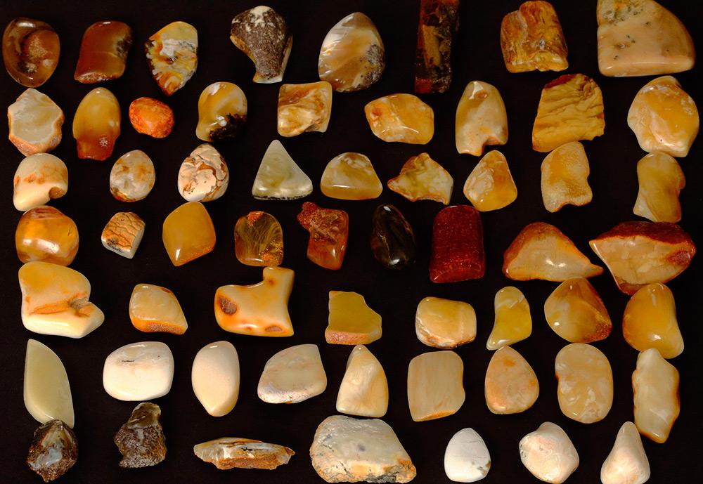 Разновидности янтаря